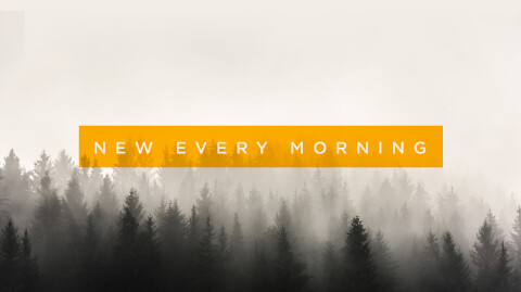 New Every Morning: Don Snowden
